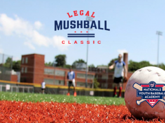 Land Lawyers Prepare for Third Annual Legal Mushball Classic